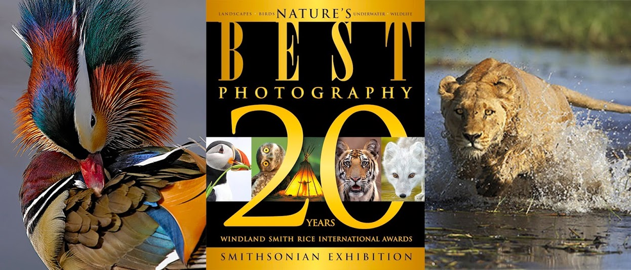 Nature's Best Photos Poster